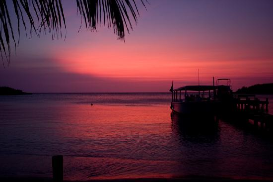 sunset-on-roatan-coconut